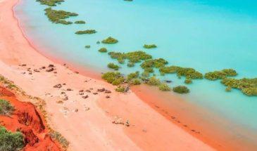 tourism-guide-australia-Roebuck-bay-broome