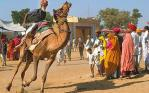 Fascinated Pushkar Fair Tour with True Devotion
