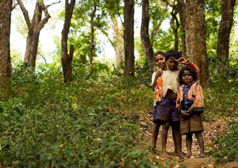 Soliga-Jungen spielen auf einer Lichtung im Rangaswamy-Temple-Schutzgebiet. Die Soliga beten die Tiger als Götter an. (Foto: Shrenk Sadalgi/Survival)
