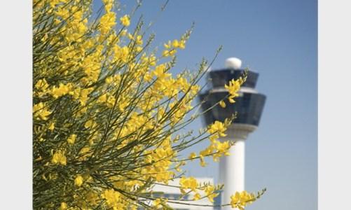 athens-airport-nature-web