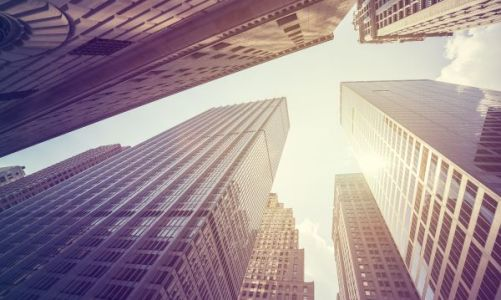 newyorkbest-network-600web