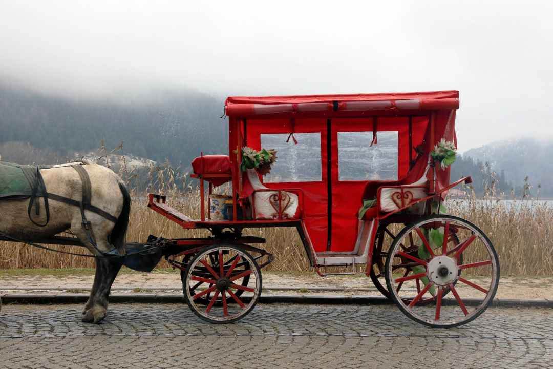 red and white horse carriage on road history of the hotel industry