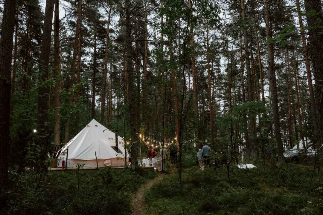 people in tent in forest