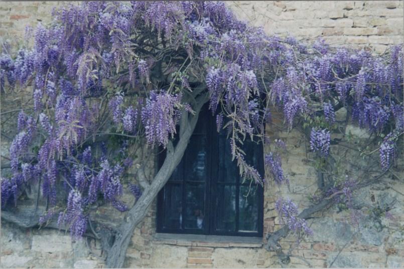 Italy99_0038