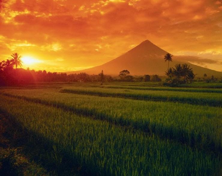 Mount Mayon