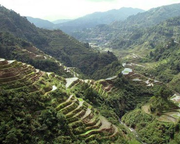 banaue rice terraces featured image
