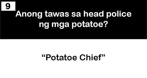9 potatoe chief