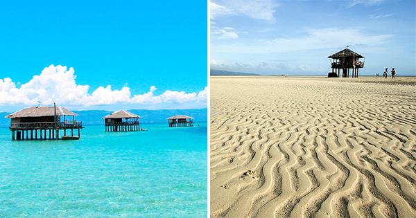 Manjuyod Sandbar Negros Occidental Philippines