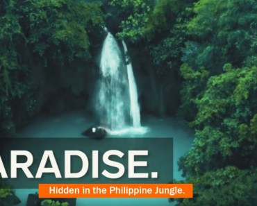 Video of Kawasan Falls in Cebu