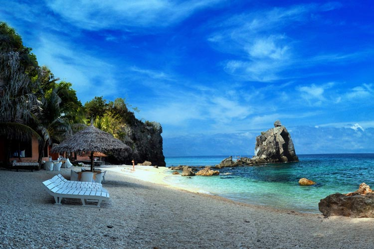 Apo Island Negros Oriental