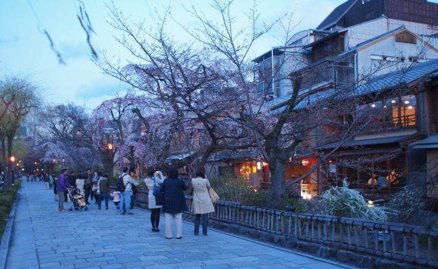 jalan bunga - Hanamikoji by www.cheria-travel.com