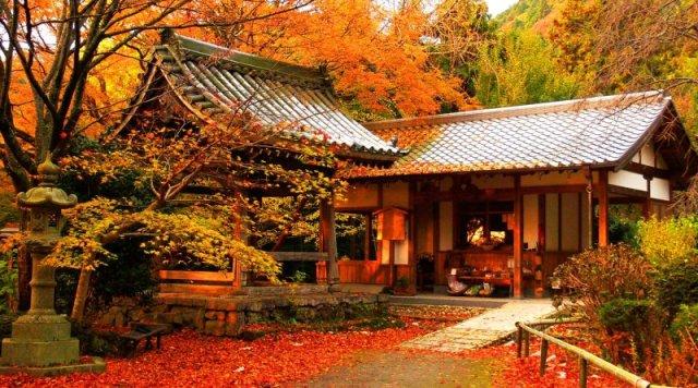 MUSIM GUGUR BY gate-jp.com