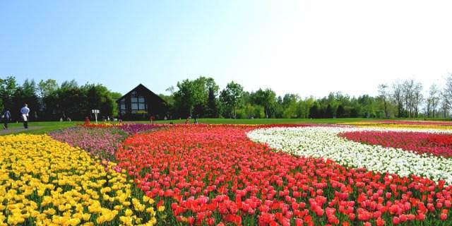 Takino Suzuran Hillside National Parkdi Hokkaido Jepang