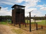 סיור למחנה ההשמדה שטוטהוף