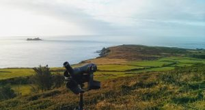 Wildlife watching without the crowds on Ireland's Wild Atlantic Way