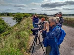2019 Irish Wildlife and Birding Holidays