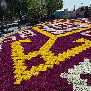 Tulip Carpet in Istanbul