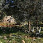 A Seljuk graveyard nearby Ephesus