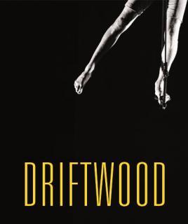 Driftwood  par CASUS Circus