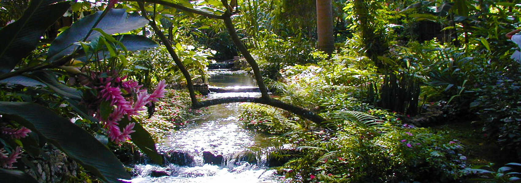 Konoko Falls, Taino Museum & River Gardens