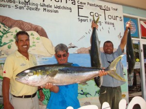 Sportfishing- Loreto Sea and Land Tours