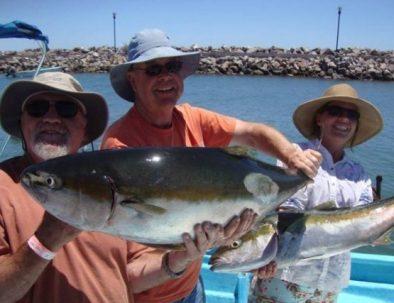 sport-fishing-yellow-tail-loreto-baja-california-sur.jpg
