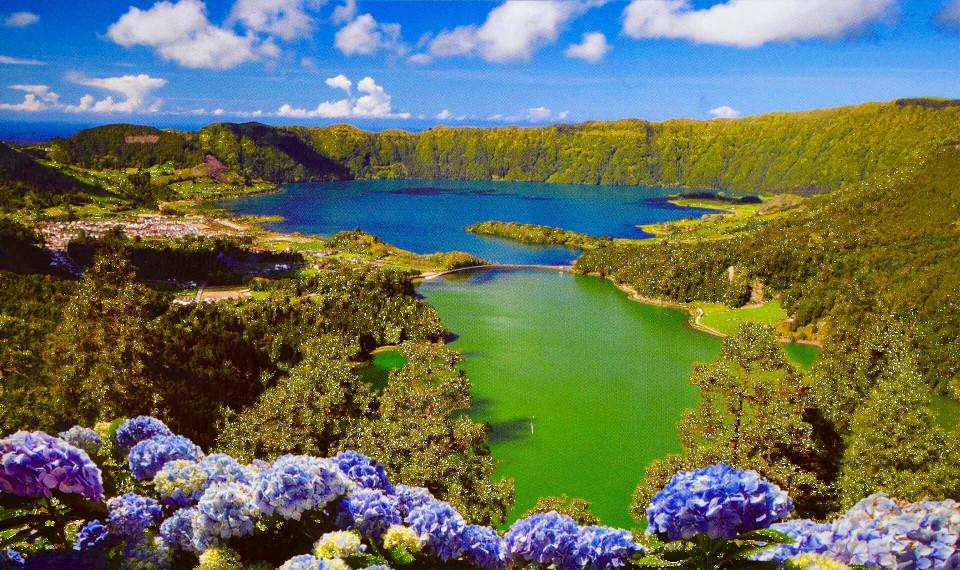 lakes on sao miguel sete cidades blue and green nature flower garden