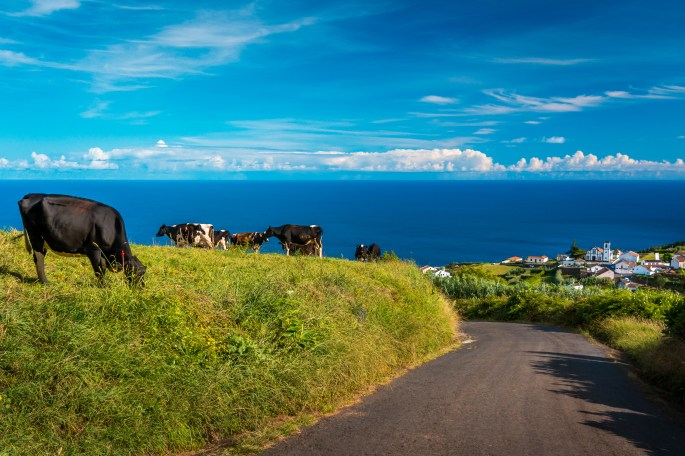Beautiful view over green hills, meadows and mountains of Sao Miguel Island in Azores, Portugal