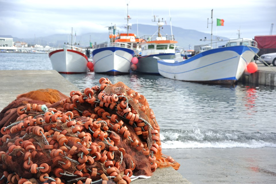 Azores Islands Fishing Sao Miguel Seafood Economy