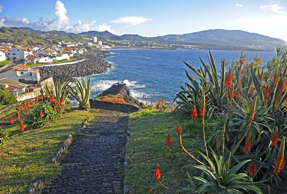 Island of Sao Miguel Beach and Atlantic flora and fauna during summer