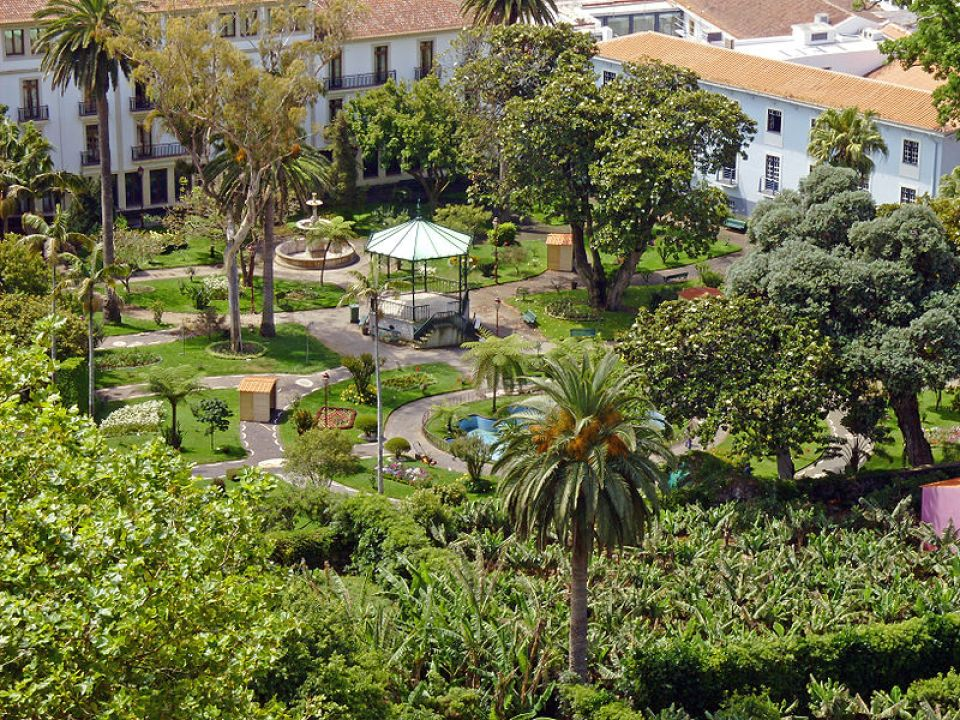 duke of terceira garden exotic vegetation azores islands