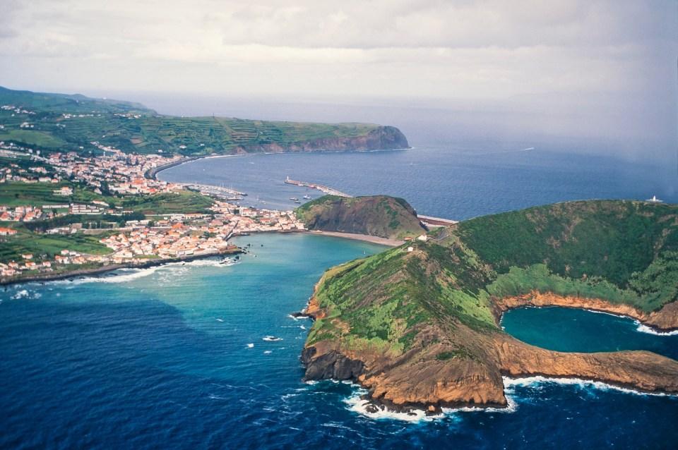 Faial Island Hydrangea Azores
