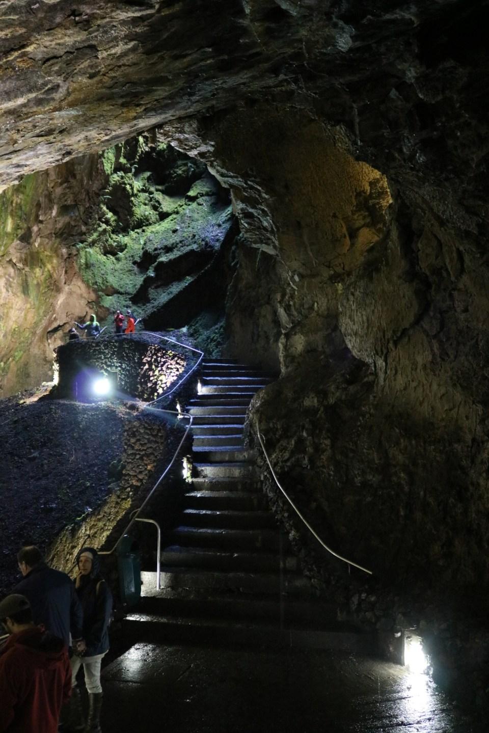 walking tour through flora and fauna of Algar do Carvão Cave on Terceira Azores