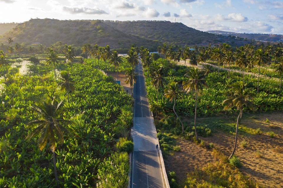 Sugar Plantation Cabo Verde Tour Macaronesia
