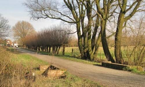 Discover unknown destinations on your running tour - Bourgoyen Ghent
