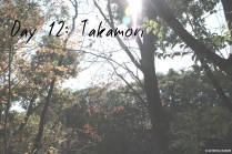 day-12-takamori-header