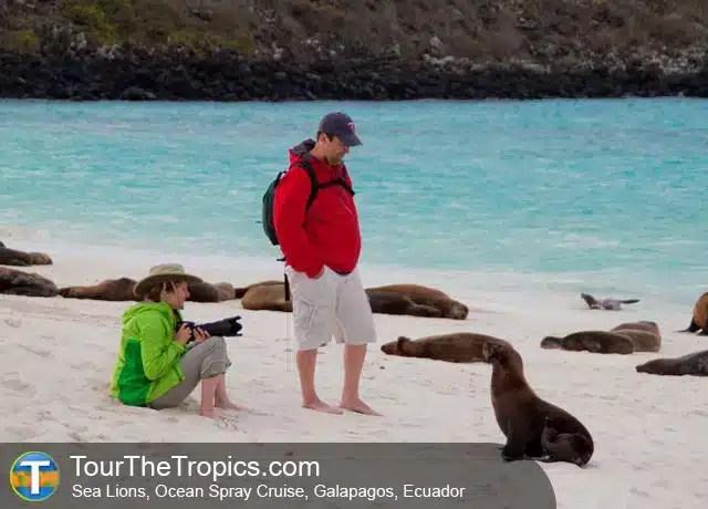 Atracciones en Islas Galápagos - Ecuador