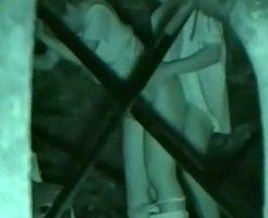 【青姦隠撮動画】暗闇でもバッチリ撮影可能の赤外線カメラを使って深夜の公園で立ちバックするカップルを隠し撮りww