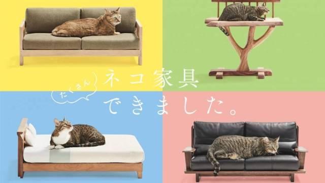 かわいいネコ家具の紹介だよ
