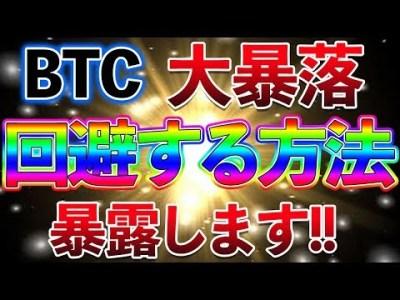 【仮想通貨】これであなたもお金持ち?大暴落を回避してビットコインが増え続けていく!!