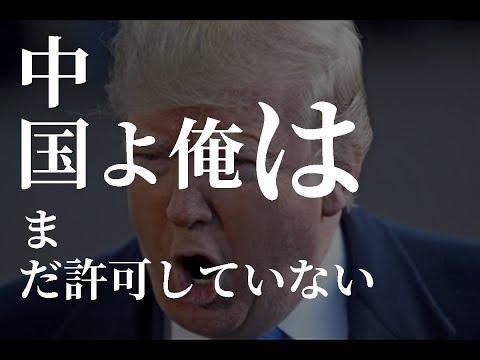 米中関係、関税撤廃で合意を否定!来週の投資戦略とあのテクニカル分析