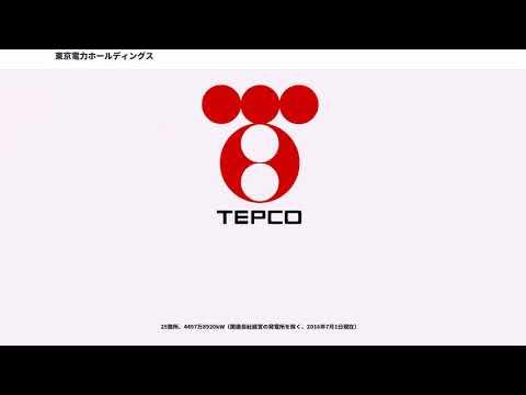 東京電力ホールディングス