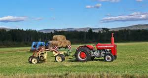 tracteur Massey Ferguson 230