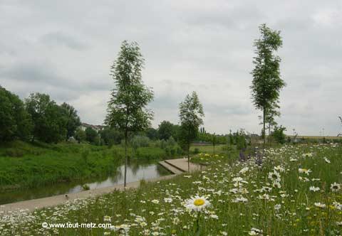 Parc de la Seille à Metz cote riviere 11