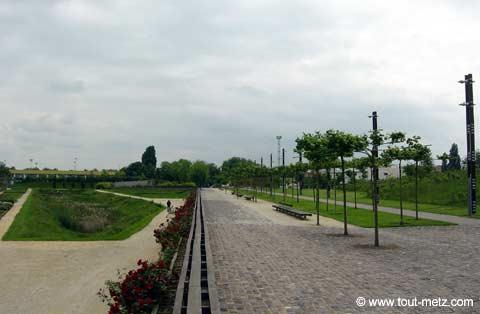 Parc de la Seille à Metz avenue centrale 2