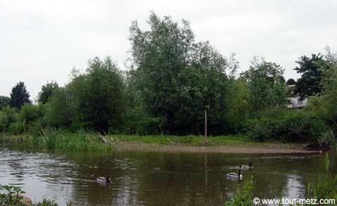 Parc de la Seille à Metz cote riviere 9