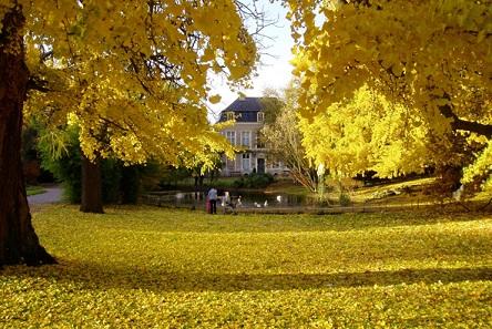 Parce du jardin botanique de Metz
