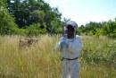 Nicolas Conti et les abeilles : une passion qui bourdonne