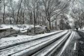 Froid et neige font leur retour en Lorraine
