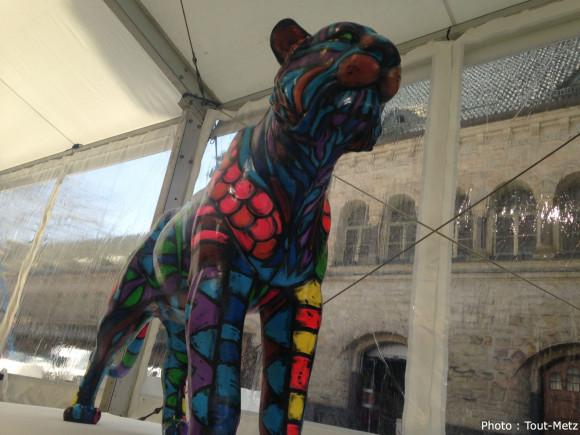 Tigres-Expo-IMG_0248
